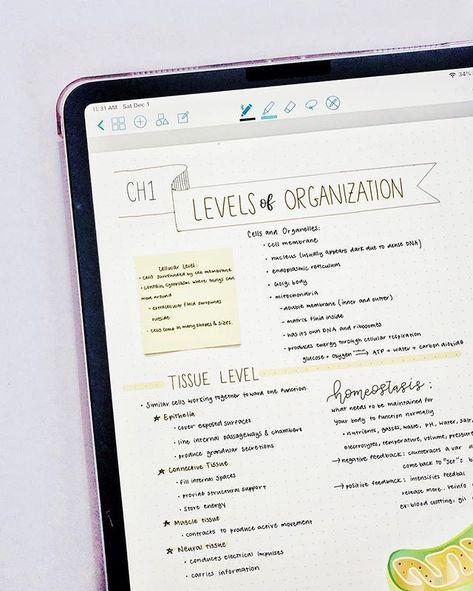 #tablet #ipad #study #motivation #organization