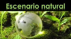 Infograma Del Escenario Natural Búsqueda De Google Desarrollo Sustentable Escenario Infograma