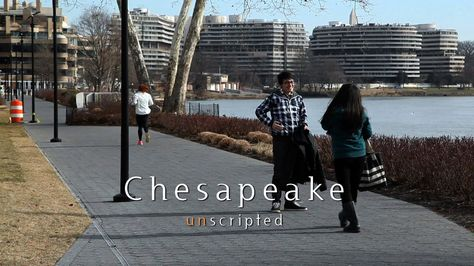 """The Chesapeake Bay Program asked people around Washington, DC what they think is being done to protect their local rivers, and what things we should all be doing to help keep our water clean.   Produced by Steve Droter. The music is """"Old Man Blanchard"""" by Josh Woodward. A video from the Chesapeake Bay Program."""