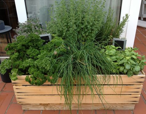 Pin Von Magdalena D Auf Garten Und Balkon Garten Garten Deko Gartenkunst