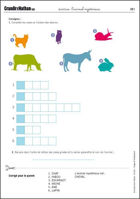 Exercices Pour Apprendre A Ecrire Ce1 L Animal Mysterieux Grandir Avec Nathan Ecriture Ce1 Ce1 Activites De Lecture