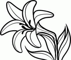 Image Result For Easter Lily Clipart With Images Flower