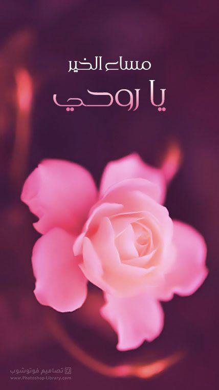 صور مساء الخير يا روحي للحبيب صور ورد مسائيه جديدة 2021 Flowers Rose Plants