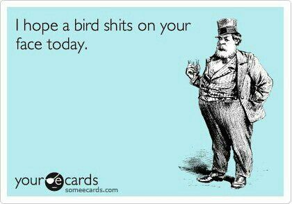 Pretty much how i feel about everybody today