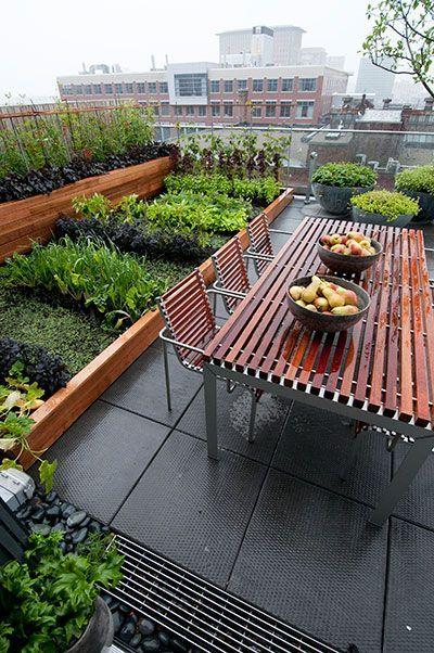 Vegetable Garden Roof Garden Design Rooftop Garden Urban Rooftop Garden