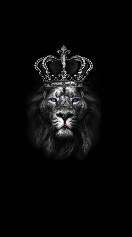 Fondos De Pantalla Gratis Zedge Lion Wallpaper Black Background Wallpaper Lion Artwork