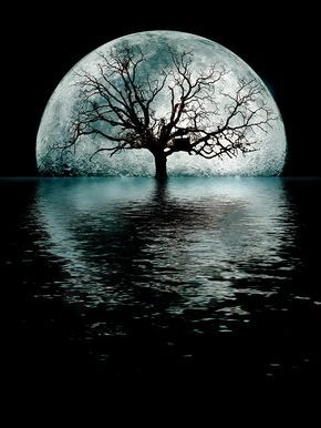Moontree Digital Art by Joseph Davis