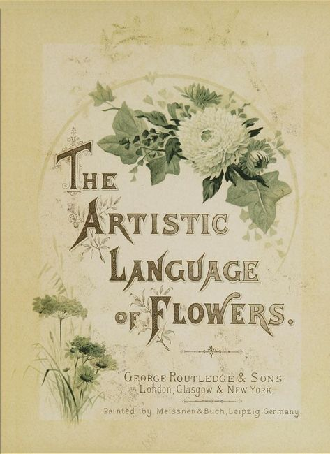 The Artistic Language of Flowers - The EXACT book I was looking for 10 years ago. I suppose better late than never.