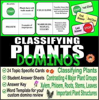 This Hands On Biology Activity Is A Great Review Of Plant Classification Including Contrasting The 4 Main Groups O Biology Activity Biology Classifying Plants