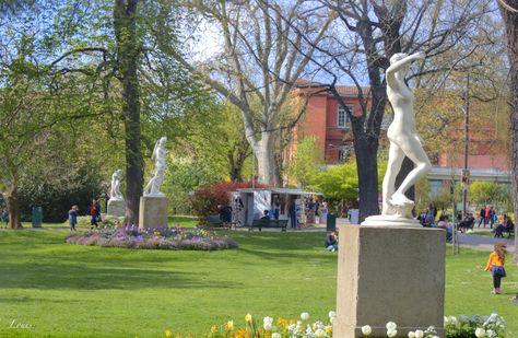 Jardin des plantes - Toulouse | Toulouse - France | Plante ...