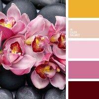 Gallery.ru / natashakon - Альбом Сочетание цветов 3