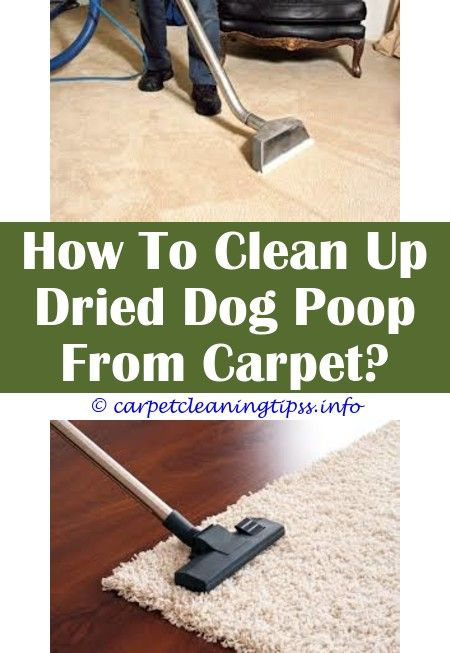 Carpet Cleaning Machine Repair Near Me All Of Your Carpet Cleaning Questions Answered Here How To How To Clean Carpet Carpet Cleaners Carpet Cleaning Machines