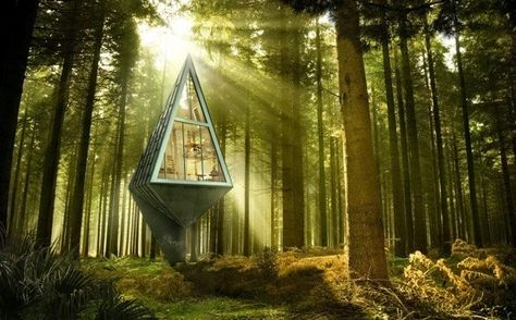 Modernes Haus Im Wald Konrad Wójcik 3d Projekt Visualisierung   Ideen Rund  Ums Haus   Pinterest   Tiny Houses And House