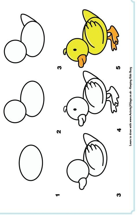 How To Draw A Cartoon Duck Learn To Draw Drawings