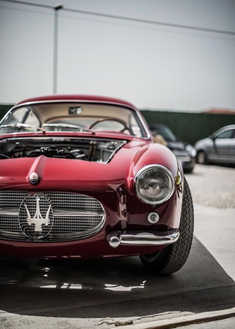 21 Good Looking Photos Of Vintage Maserati Rides | Maserati, Cars And Wheels
