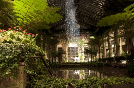 The Light Shower by artist Bruce Munro, Longwood Gardens in Pennsylvania