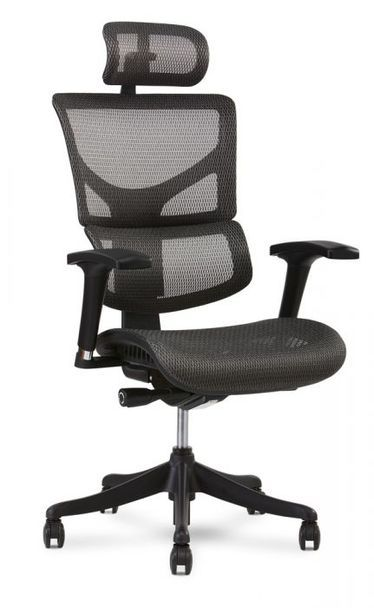 X Chair X1 Flex Mesh Task Chair Black Office Chair Office Chair Task Chair