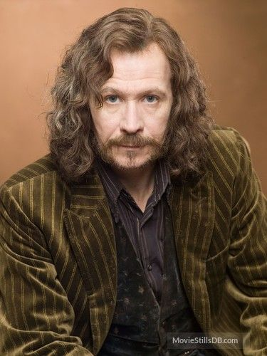 Harry Potter And The Order Of The Phoenix Sirius Black Harry Potter Teachers Harry Potter Sirius