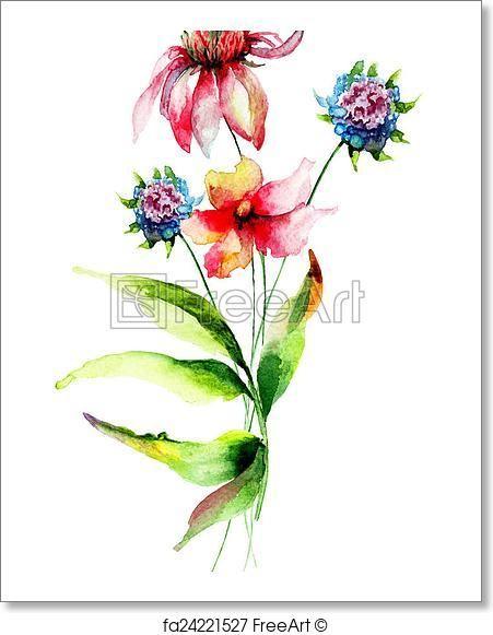 Free Art Print Of Original Summer Flowers Aquarell Kunst Und Motive