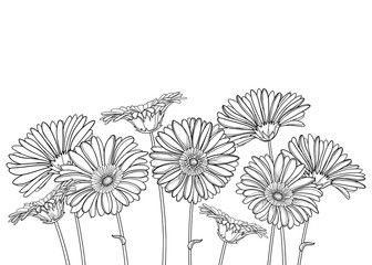 Bouquet With Outline Gerbera Or Gerber Flower And Ornate Bud In Black Isolated On White Background Gerbera Flower Drawing Flower Doodles