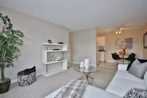 Incentives 1 Bdrm Downtown Bldg W Elevator Centre Court 1 Bedroom Apartment Kijiji Contemporary Rug