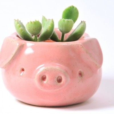 Cute Chubby Pink Pig Succulent Cactus Ceramic Planter Plant Pot - A cute, ceramic, pink pig planter glazed in glossy pink glaze. This pot is reduced and has flaws in - Clay Pinch Pots, Ceramic Pinch Pots, Cactus Ceramic, Ceramic Planters, Ceramic Art, Succulent Planters, Cactus Plants, Clay Planter, Pink Succulent