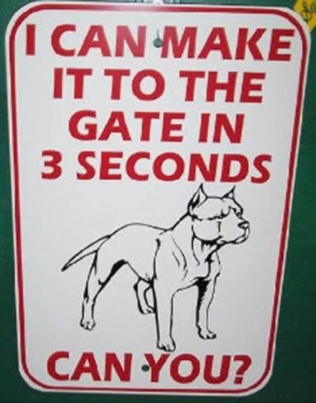"PIT BULL DOG Sign,Pitbull,9/""x12/"" Aluminum Sign,Guard Dog,Security,Gun,dwbowspb4"