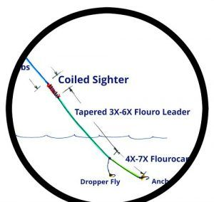 What Is A French Leader In Fly Fishing Fishing Guide Fly Fishing Fly Fishing Line