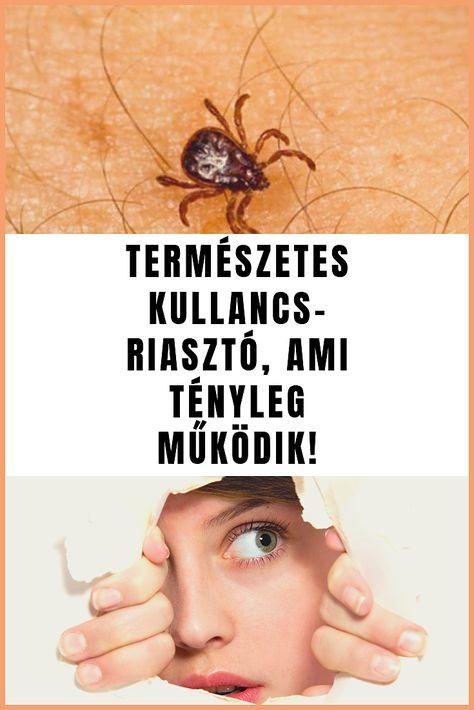zsírégető pók yohimbine hcl fogyás eredményei