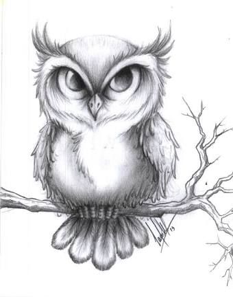 Resultado De Imagem Para Coruja Tumblr Coruja Desenho Desenhos
