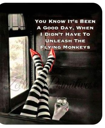 Pin By Cindy Marez Preetorius On Holidays Flying Monkey Quote Flying Monkeys Funny Quotes