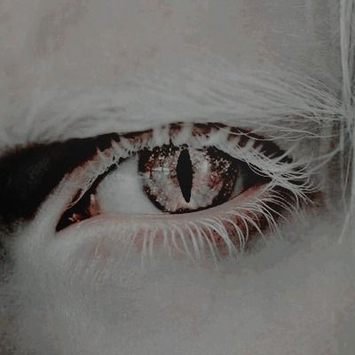 Pin By 𝕒𝕞𝕡𝕖𝕣𝕤𝕒𝕟𝕕 On Aesthetics Topics Geralt