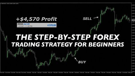 The Step By Step Forex Trading Strategy For Beginners