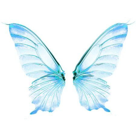 Winx Club Bloom Costume Outfit Shoplook Fairy Wings Drawing Wings Drawing Blue Fairy Wings