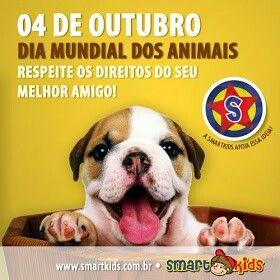 Imagem De Dia Mundial Dos Animais Por Marcelo Janoni Em Dogs Animais