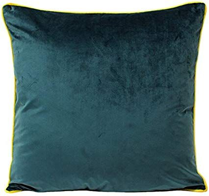 Brielle Super Soft Velvet Filled Throw//Decorative Pillow 18 inches by 18 inches Aqua//Light Blue