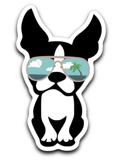 Boston In Beach Sunglasses Decal We Bark Clothing Boston Terrier Clothes Boston Terrier Boston Terrier Puppy