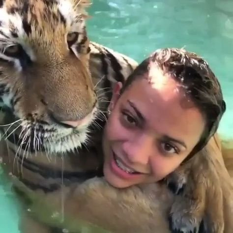 What a pet    tigerlove feelingtheheat #classpintag #explore #hrefexplorefeelingtheheat #hrefexploretigerlove #Pet #Pinterestfeelingtheheata #Pinteresttigerlovea #titlefeelingtheheat #titletigerlove