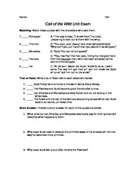 essay questions for call of the wild