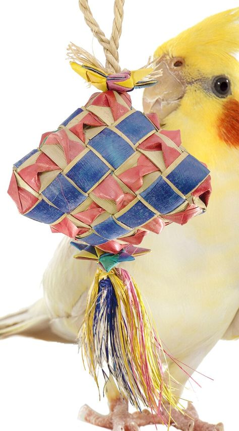 Bamboo Fan Talon Toy Bird Toy by A Bird Toy Parrot Toys /& Toy Making Parts