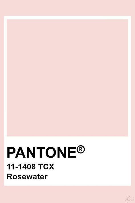 Pantone Rosewater #pantone #rosewater