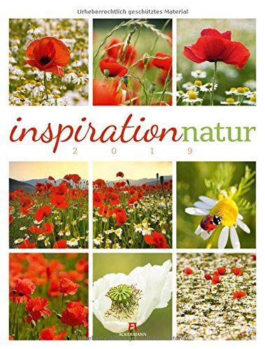 Inspiration Natur 2019 Wandkalender Im Hochformat 50x66 Amazon Partnerlink Inspiration Wandkalender Kalender