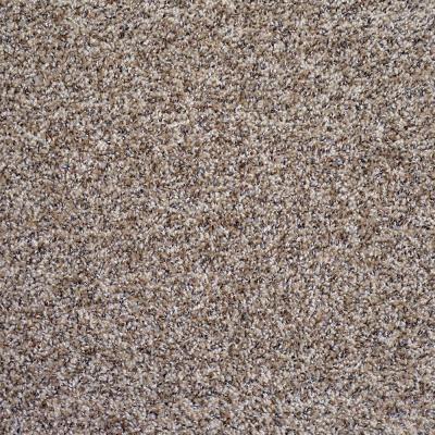 Trafficmaster Hartsfield Color Skypoint Twist 12 Ft Carpet 1080 Sq Ft Roll H2022 1815 1200 In 2020 Carpet Samples Diy Carpet Carpet Colors