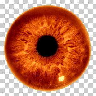 Human Eye Iris Png Clipart Aqua Blue Circle Clip Art Compact Disc Free Png Download Eyes Clipart Png Human Eye