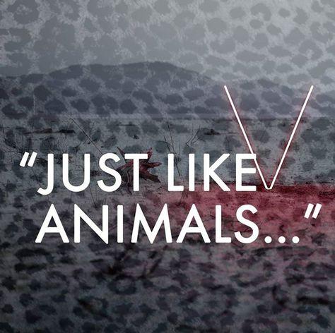 """Animals - Maroon 5 - Lyrics """"Just like animals..."""""""