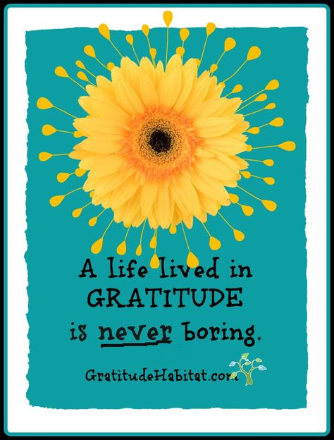 A life lived in GRATITUDE is never boring.