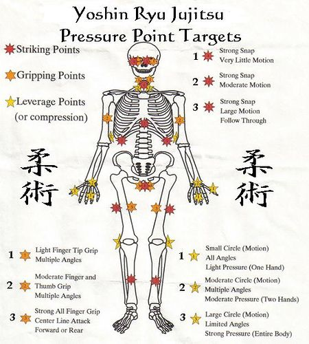 Knockout pressure point chart diagram of the most vital knockout pressure point chart diagram of the most vital striking points around the head and neck karate pinterest pressure points chart ccuart Images