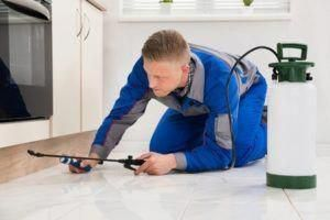 Roseville Ca Pest Control Pros Provides The Best Local Pest Control Services Preventing Bed Bugs Mice Ants Mo Termite Control Best Pest Control Pest Control