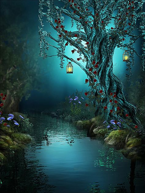 Beautiful Fantasy Magic Forest Background