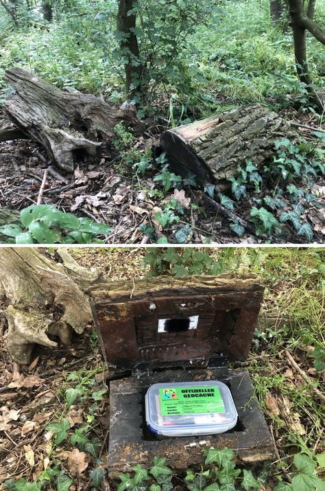 Very nice hollow log (Markus Ehm pics) Hidden Spaces, Hidden Rooms, Secret Hiding Spots, Geocaching Containers, Hidden Compartments, Secret Rooms, Hiking Tips, Cool Inventions, Secret Places